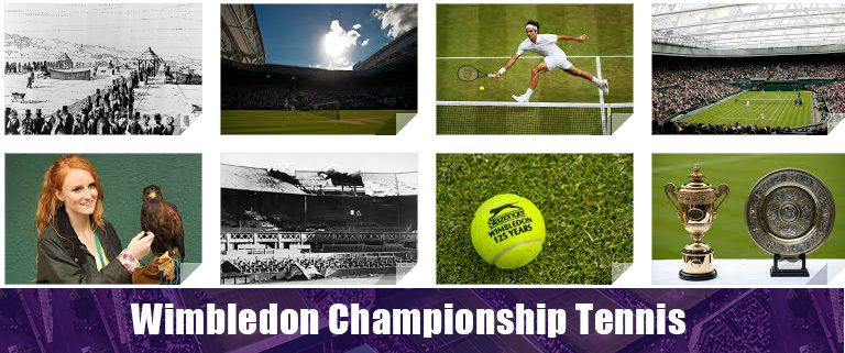 Wimbledon is the best grand slam in tennis