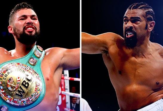 david-haye-vs-tony-bellew-purse
