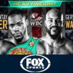 Deontay Wilder vs Gerald Washington Fight Replay Video & Highlights